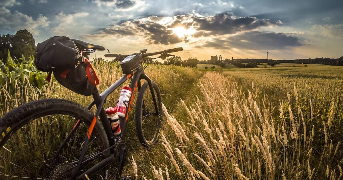 The Best Mountain Bikes for Beginners