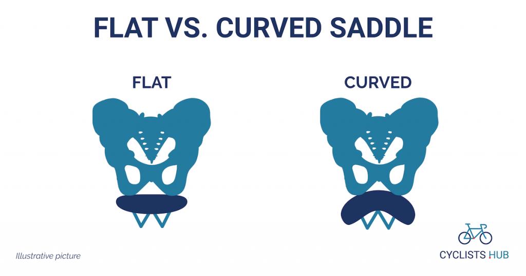 flat vs curved saddle and ischium